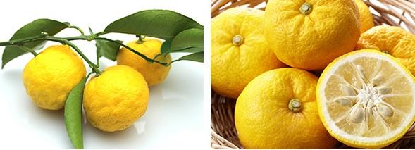 MISSHA-Super-Seed-Citron-Cleansing-Foam_4
